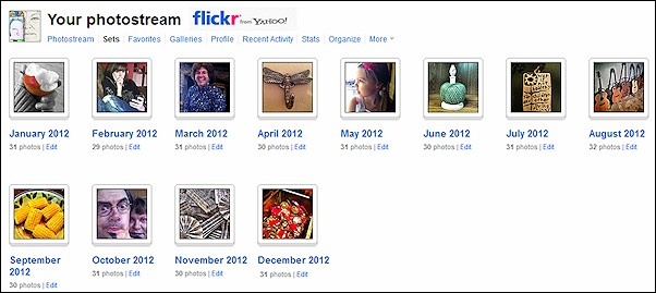 365 Photo Project Flickr Sets